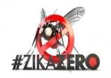 Cientista que primeiro detectou zika no Brasil sofre com falta de verba
